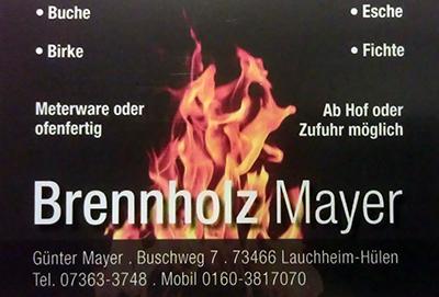 IMAG0542_brennholz_2